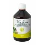 Vita Biosa Ingwer 500ml Flasche